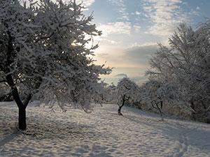 Casa Aiva inverno