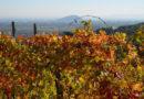 casa-aiva_vite-autunno-e-rocca-di-cavour